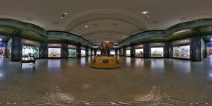 Museum of Natural History  :: 360° Panorama